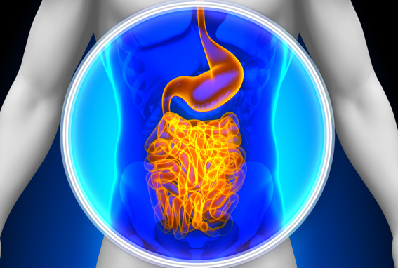 digestive tract affected by eating gluten
